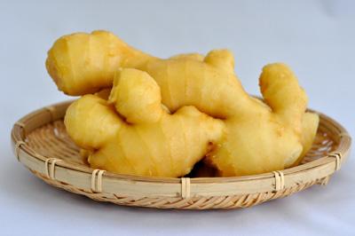 生姜の写真
